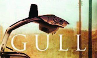the-gull