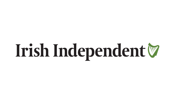 Image result for Irish Independent logo