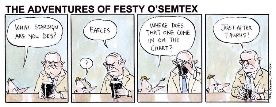 Festy - Starsign