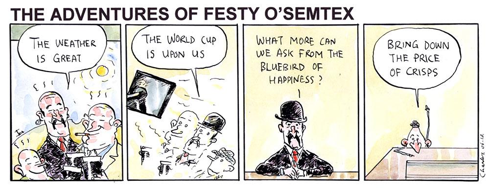 Festy - Bluebird