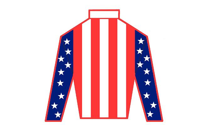 stars stripes jersey