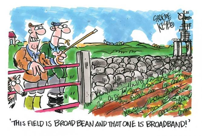 Keyes - Broad-bean - broadband