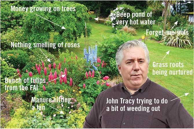 delaney garden