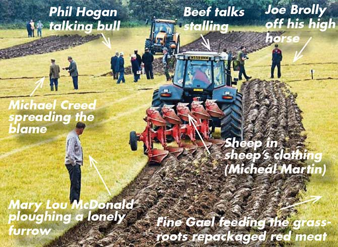 PLOUGHING CHAMPIONSHIPS 2019