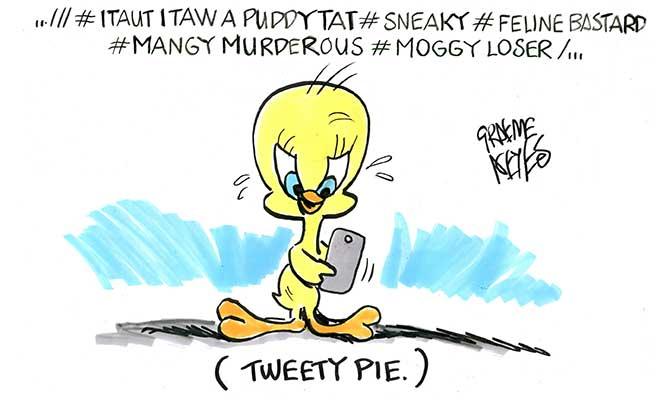 Tweety Pie