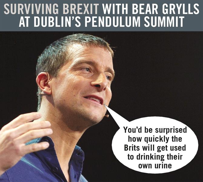 survive brexit